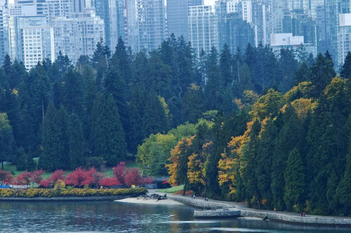 How Vancouver are you? Take this quiz and find out today!